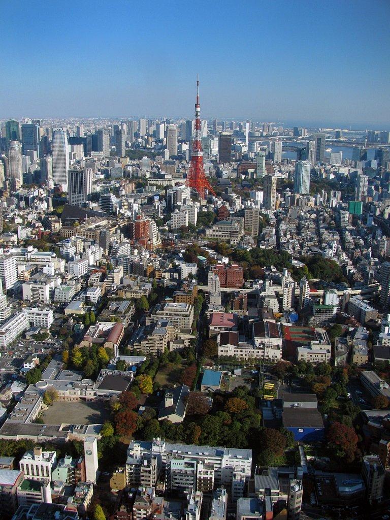Szabó Petra: Tokyo